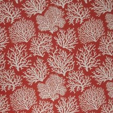 Coral Novelty Drapery and Upholstery Fabric by Fabricut