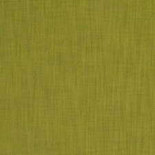 Leaf Solid Drapery and Upholstery Fabric by Fabricut