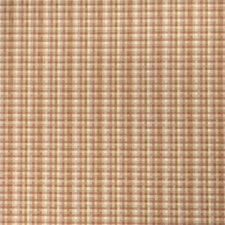 Taffy Check Drapery and Upholstery Fabric by Fabricut