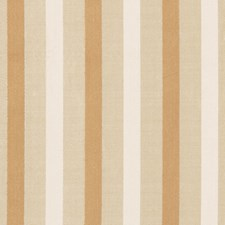 Champagne Stripes Drapery and Upholstery Fabric by Vervain