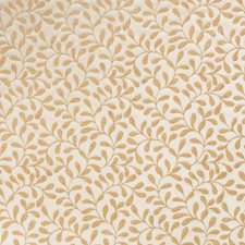 Cashew Leaves Drapery and Upholstery Fabric by Stroheim