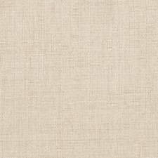Cafe Solid Drapery and Upholstery Fabric by Trend