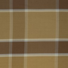 Aquaglace Check Drapery and Upholstery Fabric by Trend