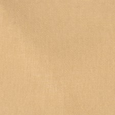 Chamois Solid Drapery and Upholstery Fabric by Trend