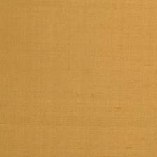 Caramel Solid Drapery and Upholstery Fabric by Trend