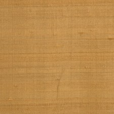 Butterscotch Solid Drapery and Upholstery Fabric by Trend