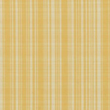 Sunshine Drapery and Upholstery Fabric by Robert Allen/Duralee