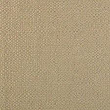 Ginger Root Drapery and Upholstery Fabric by B. Berger