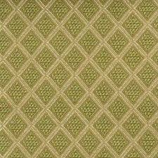 Artichoke Drapery and Upholstery Fabric by Duralee