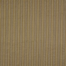 Hazelnut Drapery and Upholstery Fabric by Robert Allen