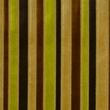 Boxwood Drapery and Upholstery Fabric by Robert Allen