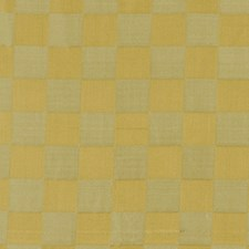 Chamomile Drapery and Upholstery Fabric by Robert Allen /Duralee