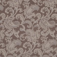 Twig Drapery and Upholstery Fabric by Robert Allen