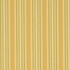 Canteloupe Drapery and Upholstery Fabric by Robert Allen /Duralee