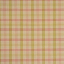 Taffy Drapery and Upholstery Fabric by RM Coco