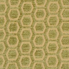 Gold/green Drapery and Upholstery Fabric by Highland Court