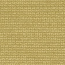 Honey Drapery and Upholstery Fabric by Robert Allen /Duralee