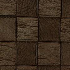 Raisin Drapery and Upholstery Fabric by Robert Allen