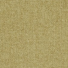 Honey Drapery and Upholstery Fabric by Robert Allen