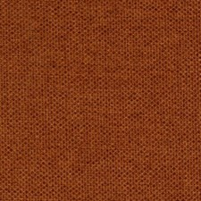 Spice Drapery and Upholstery Fabric by Robert Allen