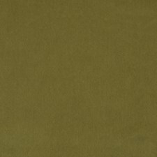 Khaki Drapery and Upholstery Fabric by Robert Allen