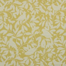 Jonquil Drapery and Upholstery Fabric by Robert Allen /Duralee