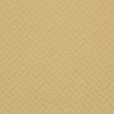 Lemon Drapery and Upholstery Fabric by Robert Allen