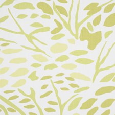 Verdi Drapery and Upholstery Fabric by RM Coco