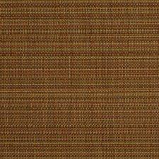 Papaya Drapery and Upholstery Fabric by Robert Allen
