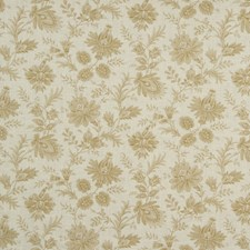 Nougat Drapery and Upholstery Fabric by Robert Allen