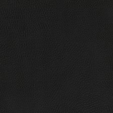 Tuxedo Drapery and Upholstery Fabric by Robert Allen