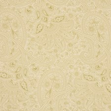 Snow Pea Drapery and Upholstery Fabric by RM Coco