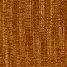 Fresh Mango Drapery and Upholstery Fabric by Robert Allen