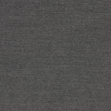 Obsidian Drapery and Upholstery Fabric by Robert Allen /Duralee