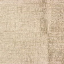 Champag Solids Drapery and Upholstery Fabric by Groundworks