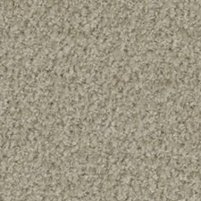 Travertine Drapery and Upholstery Fabric by Beacon Hill