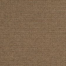 Taupe Drapery and Upholstery Fabric by Robert Allen /Duralee