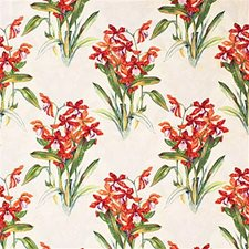 Cream/M Print Drapery and Upholstery Fabric by Groundworks
