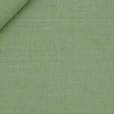 Stem Drapery and Upholstery Fabric by Robert Allen /Duralee