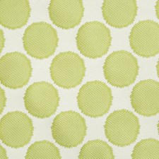 Chive Drapery and Upholstery Fabric by Robert Allen