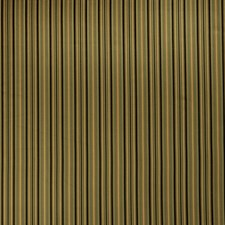 Antiquity Stripes Drapery and Upholstery Fabric by Fabricut
