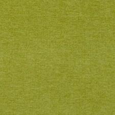 268035 DU15811 213 Lime by Robert Allen