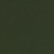 268171 15726 252 Dark Green by Robert Allen
