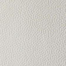272400 DU15800 84 Ivory by Robert Allen