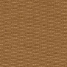 279641 9119 77 Copper by Robert Allen