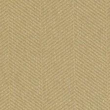 286193 DU15917 6 Gold by Robert Allen
