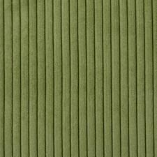 286915 36163 597 Grass by Robert Allen