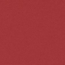 289587 32810 181 Red Pepper by Robert Allen