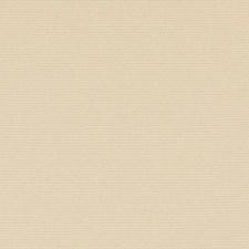 289779 32810 283 Chamois by Robert Allen