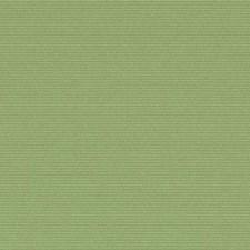289799 32810 609 Wasabi by Robert Allen